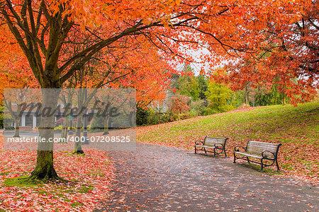 Walking and Biking Park Trails in Portland Oregon Downtown Waterfront in Fall Season
