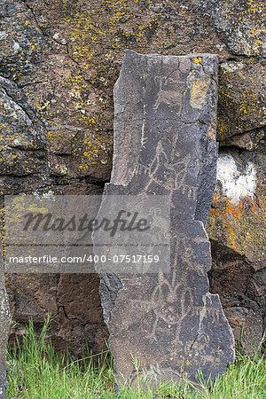 Native Anerican Indians Wildlife Birds and Animals Petrogylphs on Rock Artwork at Horsethief Lake Washington