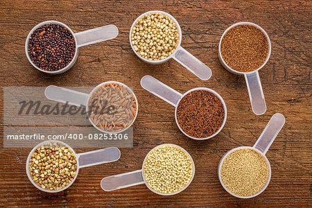 gluten free grains (quinoa, brown rice, kaniwa, amaranth, sorghum, millet, buckwheat, teff) - a set of measuring scoops on a rustic wood