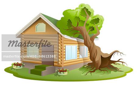Hurricane tree fell on house. Property insurance. Illustration in vector format