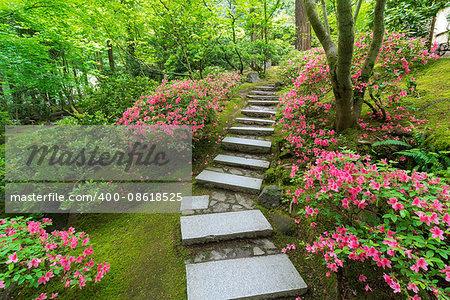 Azaleas in bloom along granite stone stair steps at Japanese Garden in Spring