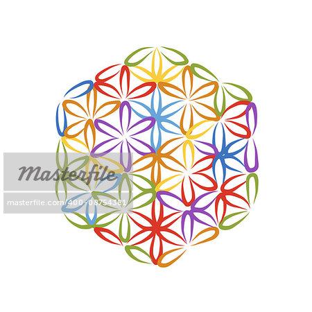 Flower of Life, sketch for your design, vector illustration