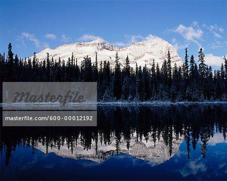 Odaray Mountain Yoho National Park British Columbia, Canada