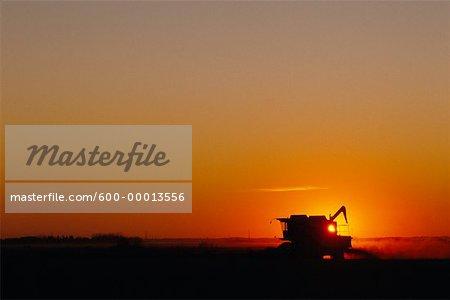 Silhouette of Combine at Sunset Alberta, Canada