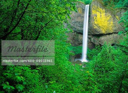 Latourell Falls Columbia River Gorge Oregon, USA
