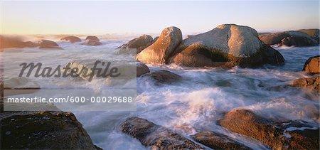 Cape Columbine, Western Cape, South Africa