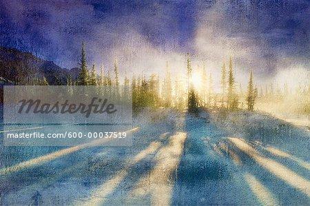 Winter Sunrise through Trees Jasper National Park Alberta, Canada