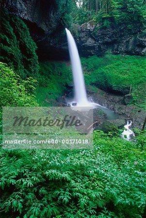 Northern Falls, Silver Falls State Park, Oregon, USA