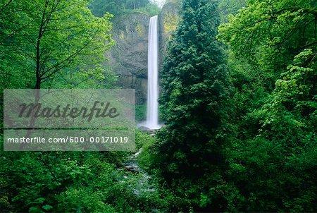 Latourell Falls, Oregon, USA