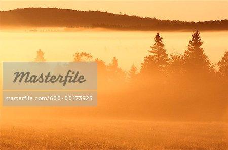Sunrise, Elmhurst, New Brunswick, Canada