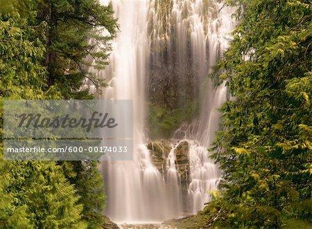 Proxy Falls, Oregon, USA
