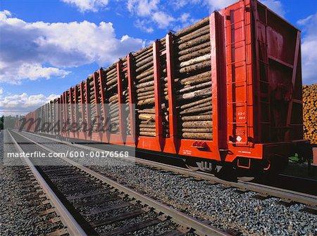 Pulpwood on Train, Northern Ontario, Canada