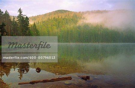Rachelsee and Rachel, Bayerischer Wald National Park, Bavaria, Germany