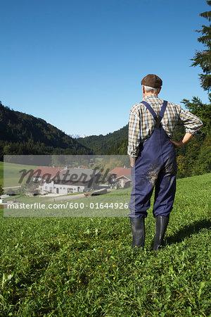 Farmer Looking over Farmland