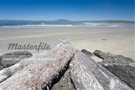 Driftwood on Beach, Long Beach, Pacific Rim National Park, Vancouver Island, British Columbia, Canada