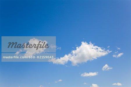 Puffy Clouds in Sky