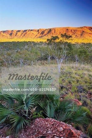 Osmand Range, Purnululu National Park, Kimberley, Western Australia, Australia