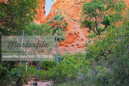 Echidna Chasm, Bungle Bungle, Purnululu National Park, Kimberley, Western Australia, Australia