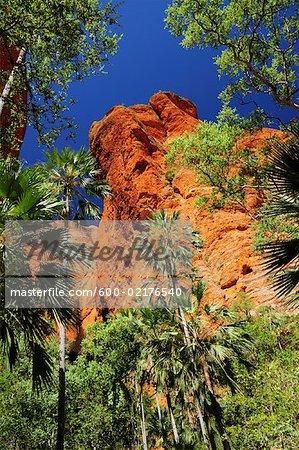 Mini Palms Gorge, Bungle Bungle, Purnululu National Park, Kimberley, Western Australia, Australia