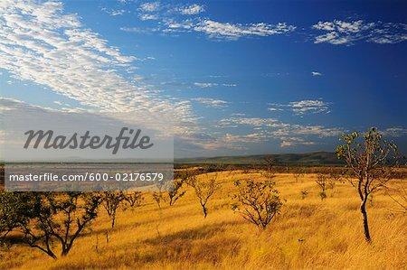 Scenery near Wyndham, Kimberley, Western Australia, Australia