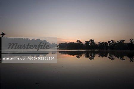 Lake Martin at Dusk, Lafayette, Louisiana, USA