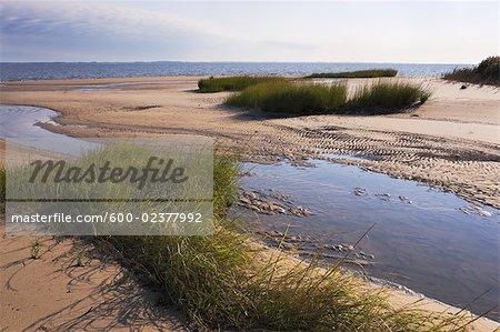 Sline With Sand Dunes Woodland Beach Delaware Stock Photo
