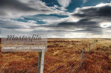 Wire Fence in Field, Borgarfjordur, Iceland