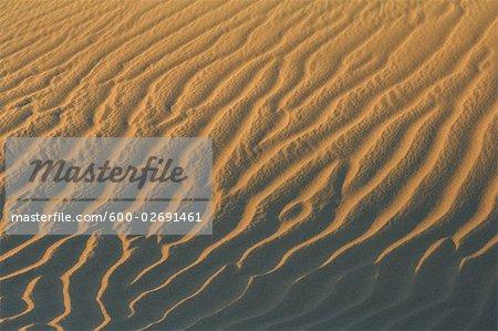 Close-Up of Ripples in Sand Dune, Maspalomas, Playa del Ingles, Gran Canaria, Spain