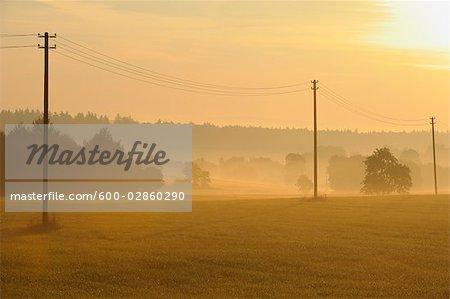 Sunrise over Field, Hessen, Odenwald, Germany