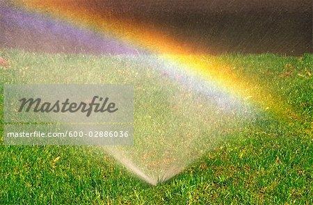 Sprinkler on Lawn, Rainbow