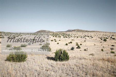 Marfa, Presidio County, West Texas, Texas, USA
