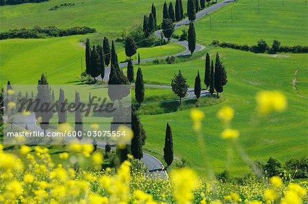 Monticchiello, Siena Province, Val d'Orcia, Tuscany, Italy