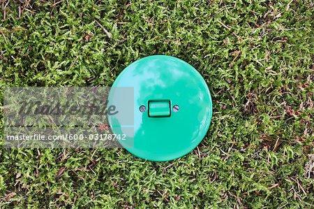 Light Switch in Grass