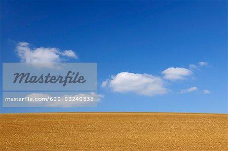 Sowed Field, Schweinfurt, Bavaria, Germany