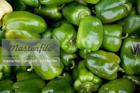 Organic Green Peppers, Penticton, Okanagan Valley, British Columbia, Canada
