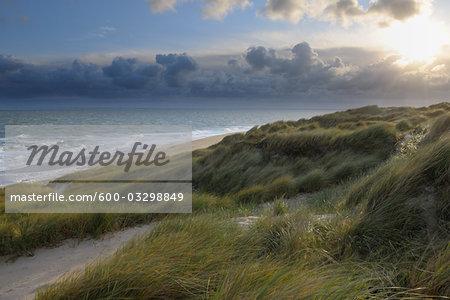 Beach and Dunes, Sylt, North Frisian Island, Schleswig-Holstein, Germany