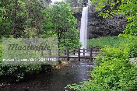 Silver Creek, South Falls, Silver Falls State Park, Marion County, Oregon, USA