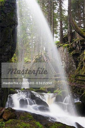 Waterfall, Menzenschwand, Black Forest, Baden-Wurttemberg, Germany