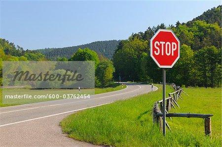 Stop Sign on Road, Pfalzerwald, Rhineland-Palatinate, Germany