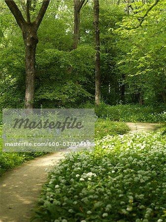 Amstelpark, Amsterdam, North Holland, Netherlands