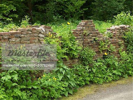 Crumbling Brick Wall, Amstelpark, Amsterdam, North Holland, Netherlands