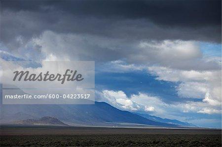 Rangeland, Nevada, USA