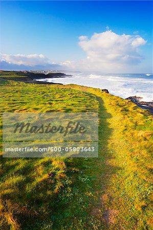South West Coast Path leading around Grassy Coastline, Trevose Head, Cornwall, England