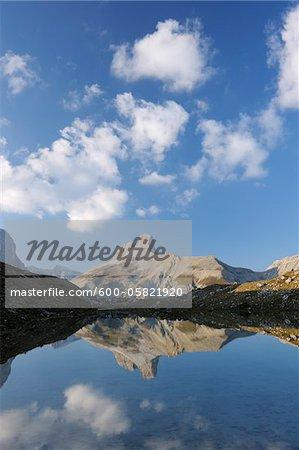 Schwabenalpenkopf, Dolomites, South Tyrol, Trentino Alto Adige, Italy