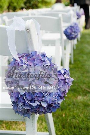 Hydrangeas on Chairs at Wedding Ceremony, Toronto, Ontario, Canada