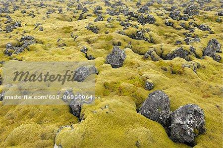Volcanic Landscape, Hellnar, Snaefellsnes Peninsula, Vesturland, Iceland