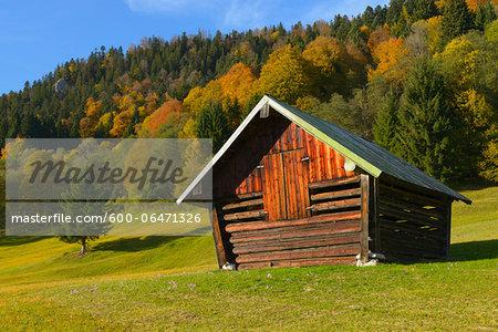 Hay Barn in Autumn, near Garmisch-Partenkirchen, Werdenfelser Land, Upper Bavaria, Bavaria, Germany