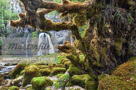 Cascade des Combes, Saint-Claude, Jura, Franche-Comte, France