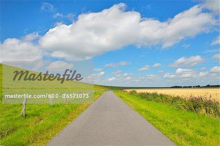 Road with North Sea Dike, Simonsberg, Schleswig-Holstein, Germany