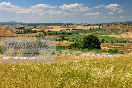 Tuscany Countryside in the Summer, Asciano, Siena Province, Tuscany, Italy